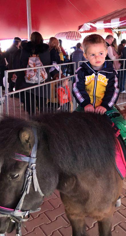 Забавления за деца в София – цирк и конна езда / цени и премеждия /